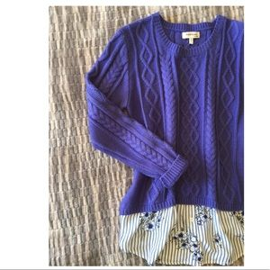 NWT Cobalt Blue Cable Knit Sweater